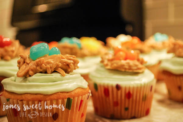 how-to-make-bird-themed-cupcakes-17